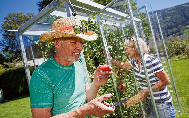 Mein Garten, mein Teller – mein Tomatenhaus